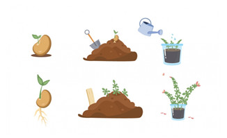 植物播种生长发芽移栽开花卡通套图素材设计