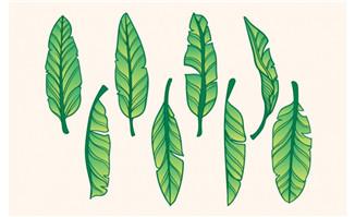 手绘卡通植物叶子素材设计