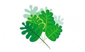 扁平化卡通漂亮绿叶叶子形状设计素材