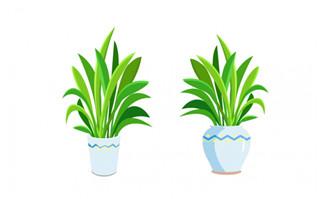 清新卡通可爱绿植盆栽素材下载