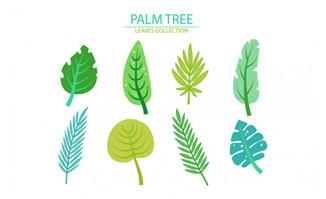 卡通植物棕榈树叶子形状素材设计