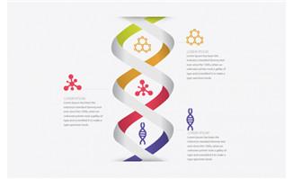 医学化学DNA信息图表矢量