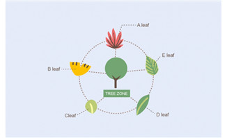 植物数据分析图表设计