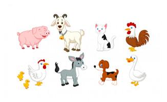 卡通矢量家畜动物素材