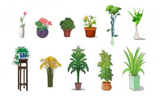 植物室内盆景手绘花卉道具素材