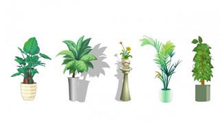 办公区植物盆景造型动画背景道具素材