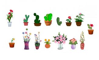 办公桌上开花的小盆景植物道具素材