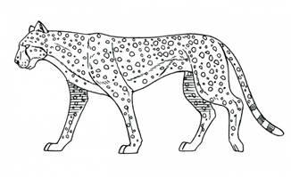 豹子猫动画运动规律分解图学习资料