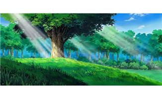 晨光打在森林里面的cg动画绿色背景设计
