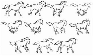 马儿动画运动的动作分解这里全了,请耐心看完