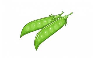 绿色卡通豌豆蔬菜AI素材