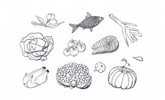 手绘蔬菜鱼肉等素材矢量