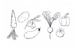 蔬菜萝卜土豆甜椒茄子手绘素材