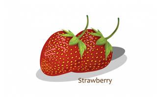 水果草莓矢量素材图片