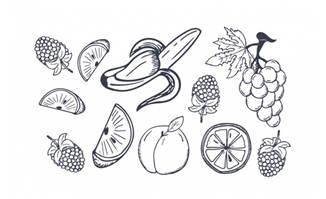 手绘香蕉葡萄梅子水果元素插画