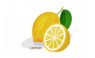 卡通柠檬矢量图片