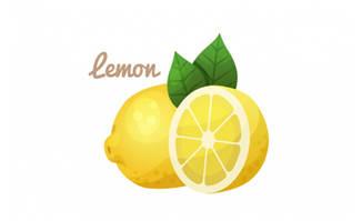 卡通写实风格水果柠檬矢量素材