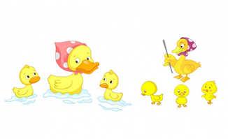 一群鸭子戏水动画动漫素