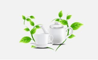 清新绿色养生薄荷茶矢量