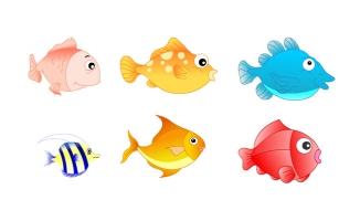 6种不同种类的热带观赏鱼