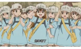 时隔14年后,央视再次播放日本动画作品