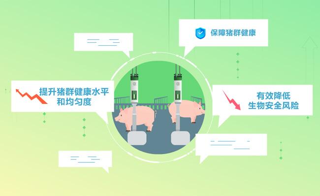智能养猪保障提升猪健康管理系统MG动画素材