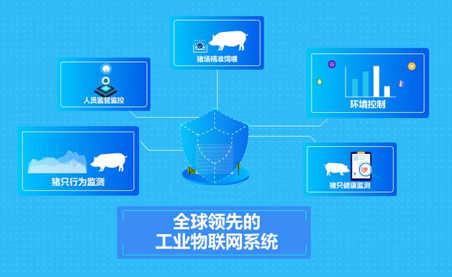 蓝色科技养猪养殖业管理系统MG动画宣传片素材